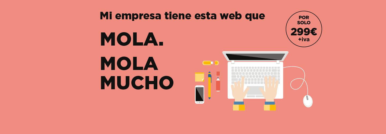 pagina-web-profesional-low-cost-01