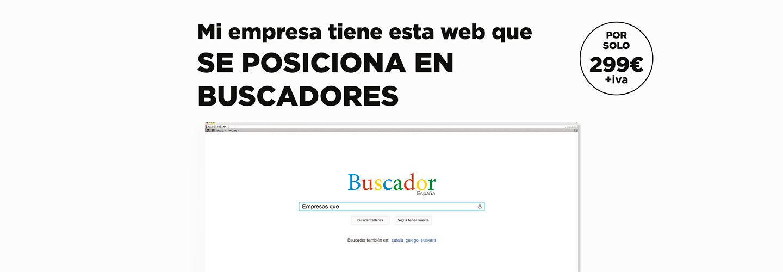 pagina-web-profesional-low-cost-04
