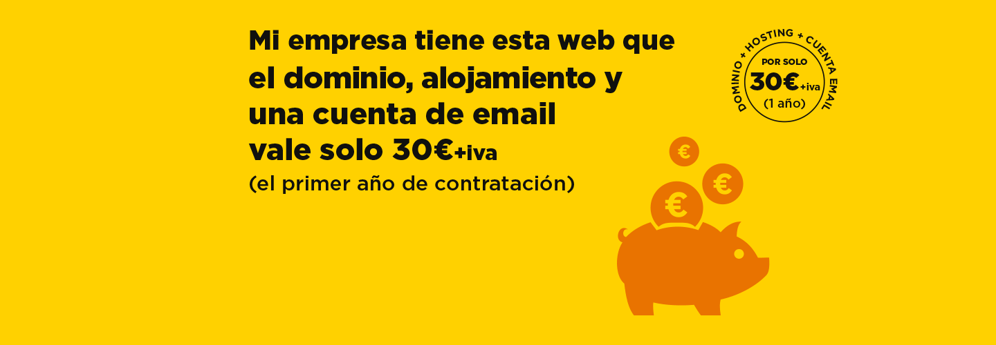 pagina-web-profesional-low-cost-07